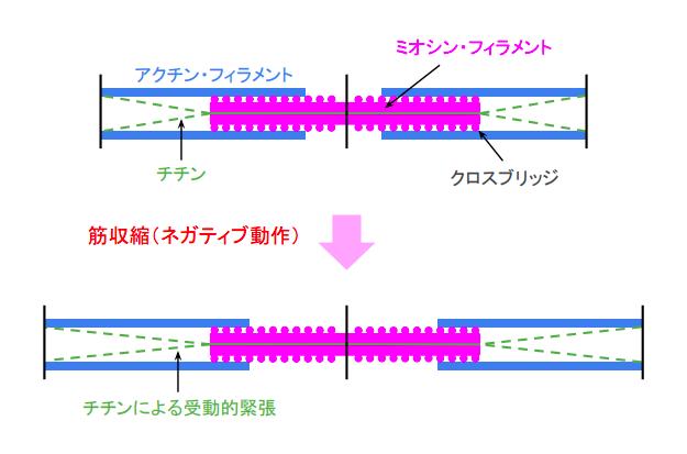 f:id:takumasa39:20180719154752p:plain