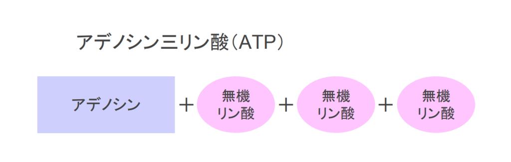 f:id:takumasa39:20181004144023p:plain