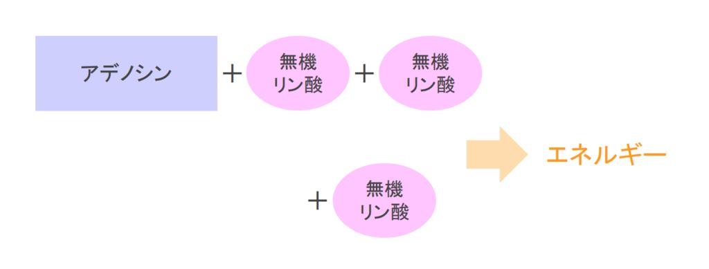 f:id:takumasa39:20181004144045p:plain