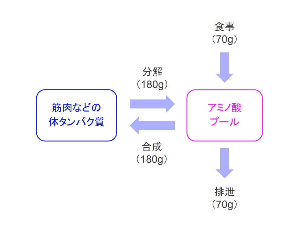 f:id:takumasa39:20181123134446p:plain