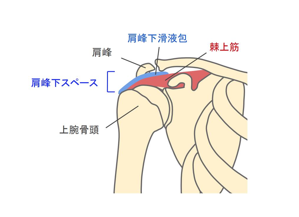 f:id:takumasa39:20190118133640p:plain