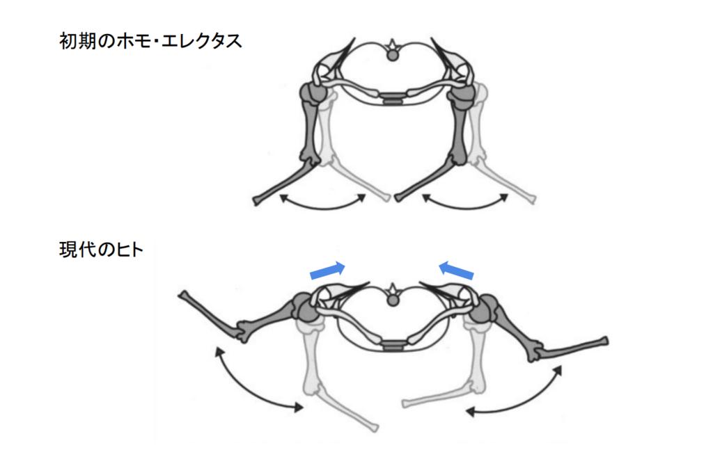 f:id:takumasa39:20190125124529p:plain