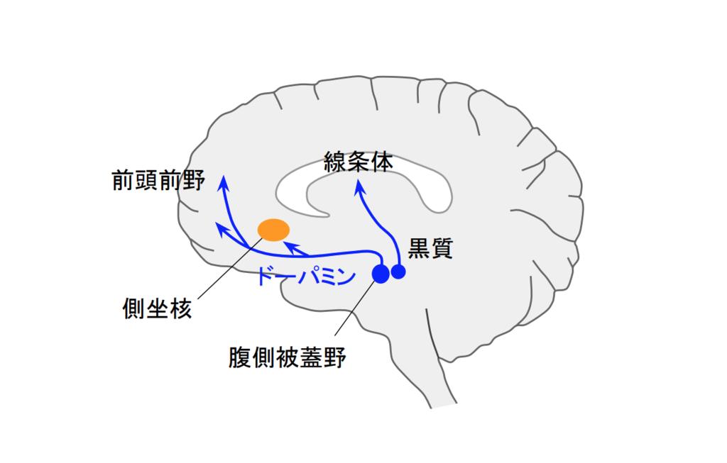 f:id:takumasa39:20190213234343p:plain