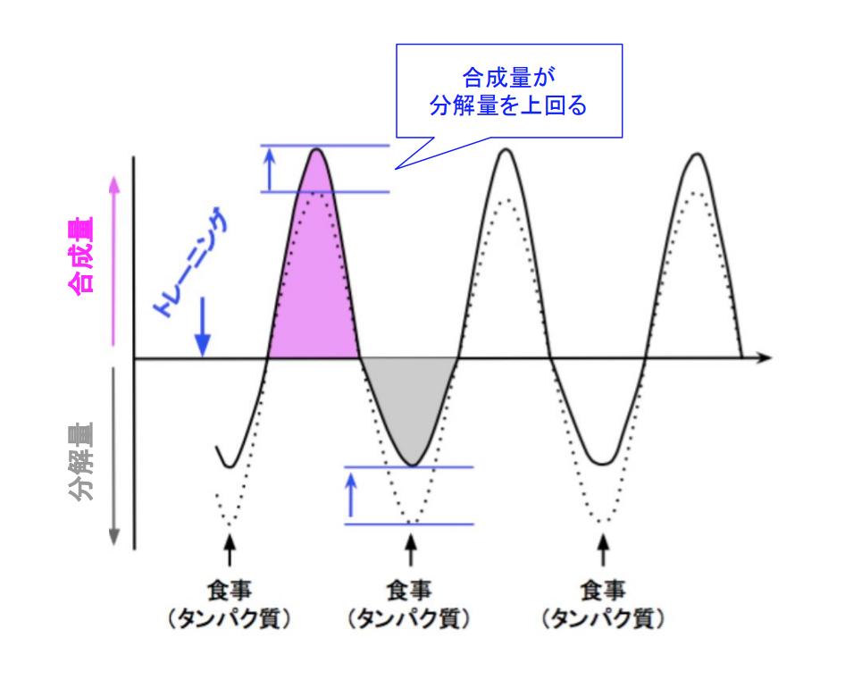 f:id:takumasa39:20190407224330p:plain