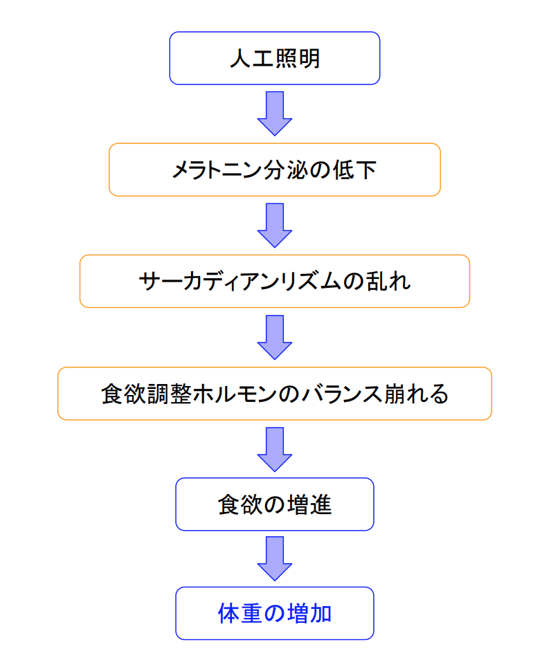 f:id:takumasa39:20190718134625p:plain