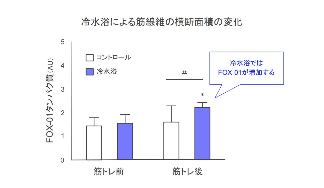 f:id:takumasa39:20190922151026p:plain