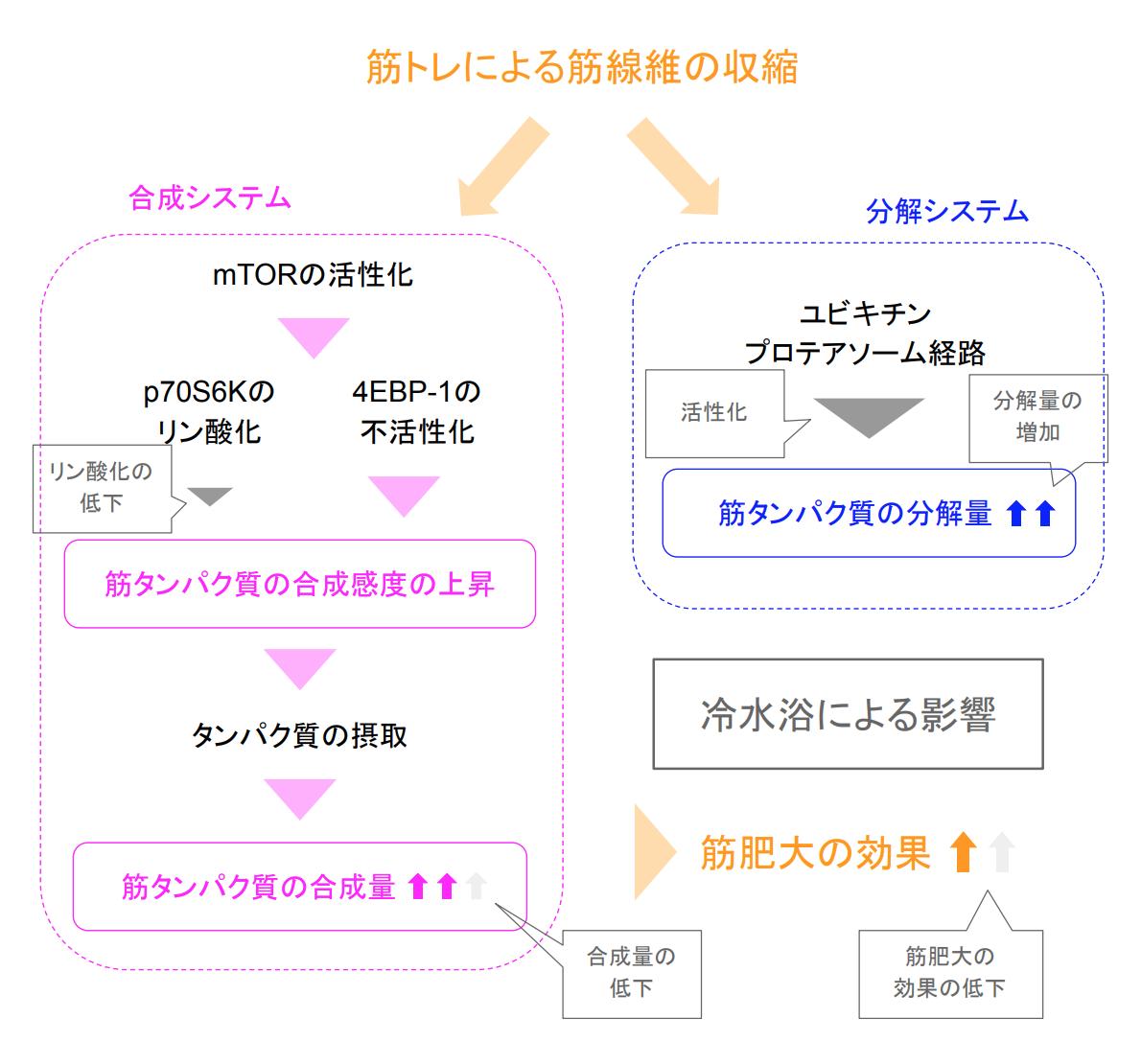 f:id:takumasa39:20190922151812p:plain
