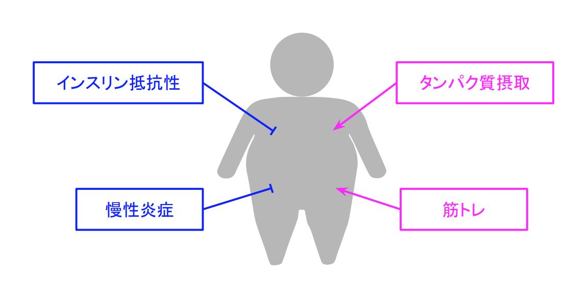 f:id:takumasa39:20191007120738p:plain