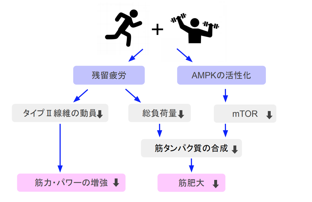 f:id:takumasa39:20191126173406p:plain