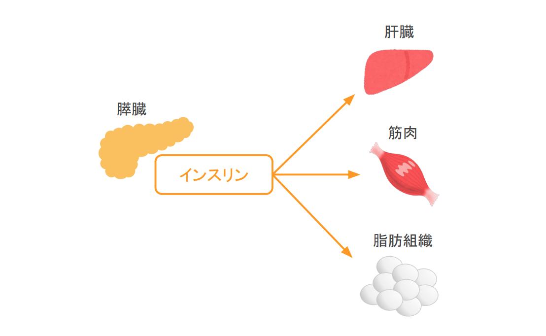 f:id:takumasa39:20200329154114p:plain