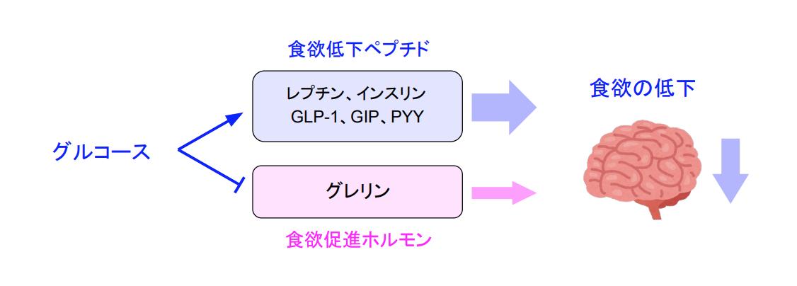 f:id:takumasa39:20200329163552p:plain