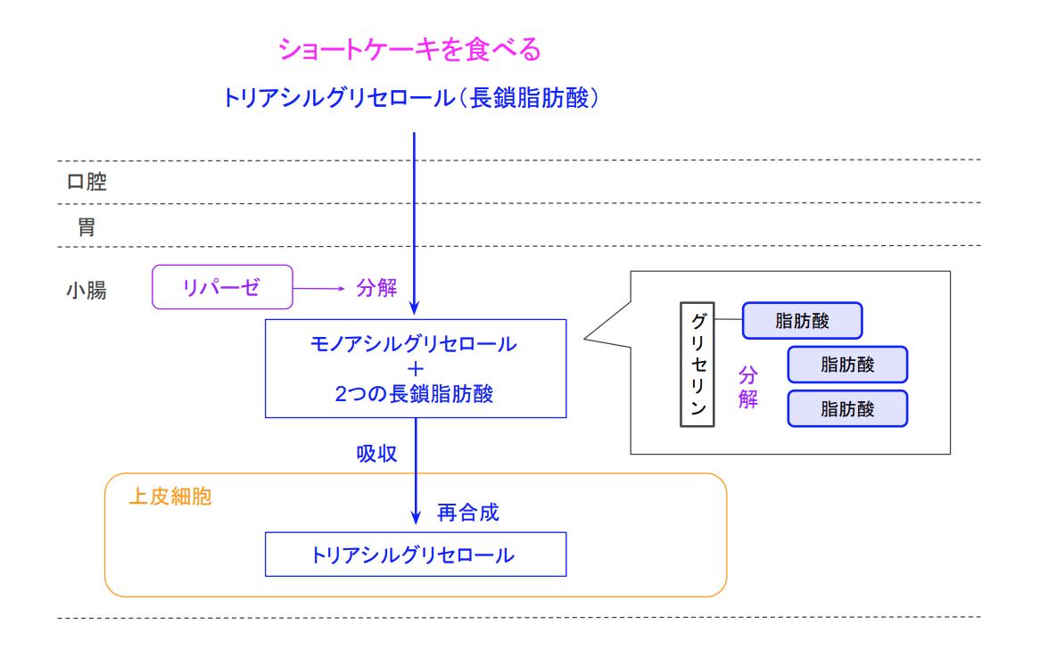 f:id:takumasa39:20200507184125p:plain