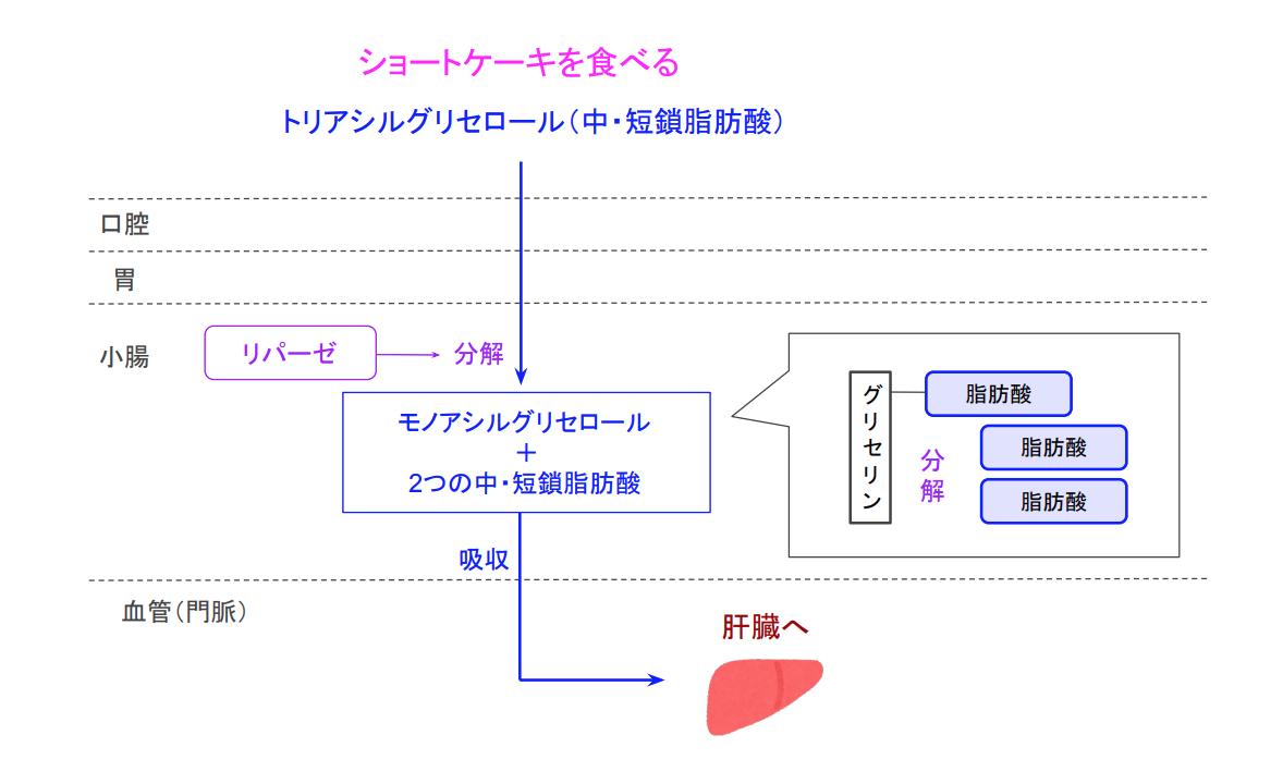 f:id:takumasa39:20200507185735p:plain