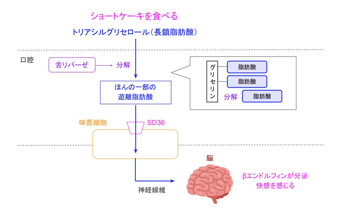 f:id:takumasa39:20200507190334p:plain