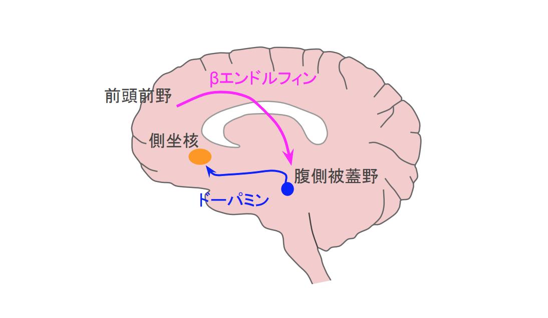 f:id:takumasa39:20200508123211p:plain