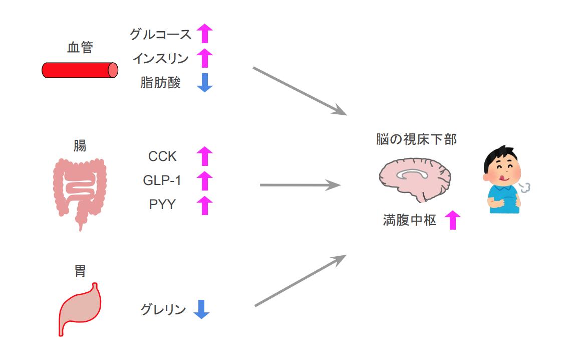 f:id:takumasa39:20200924230803p:plain