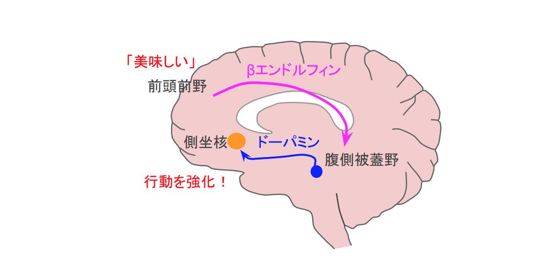 f:id:takumasa39:20200924232741p:plain
