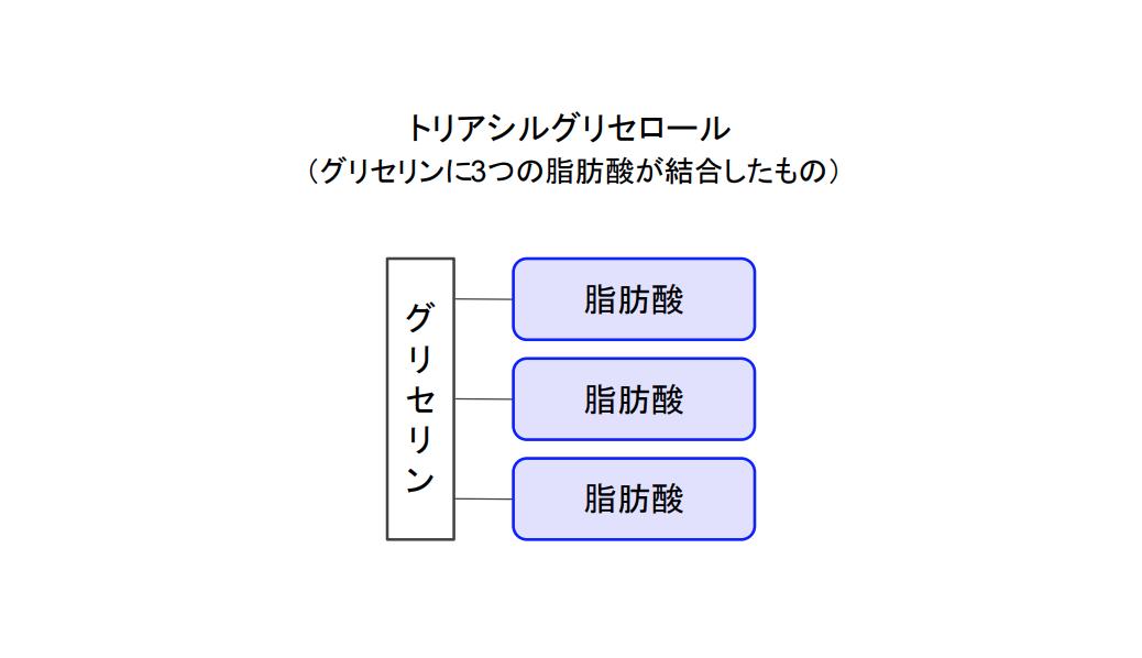 f:id:takumasa39:20201124194553p:plain