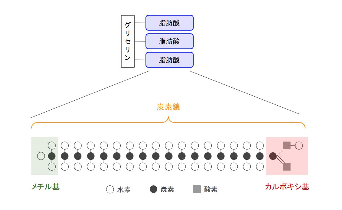 f:id:takumasa39:20201124194708p:plain