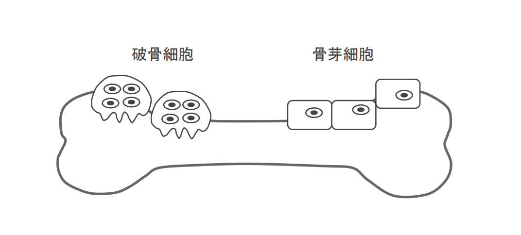 f:id:takumasa39:20210122155313p:plain