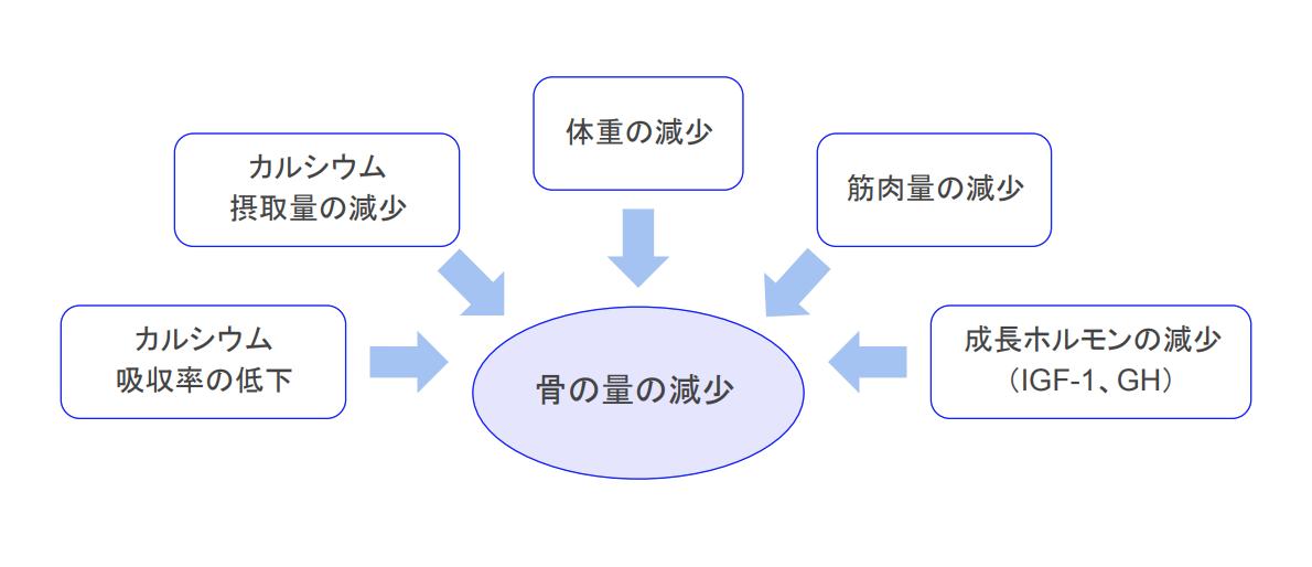f:id:takumasa39:20210122155413p:plain