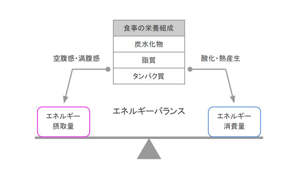 f:id:takumasa39:20210217105939p:plain