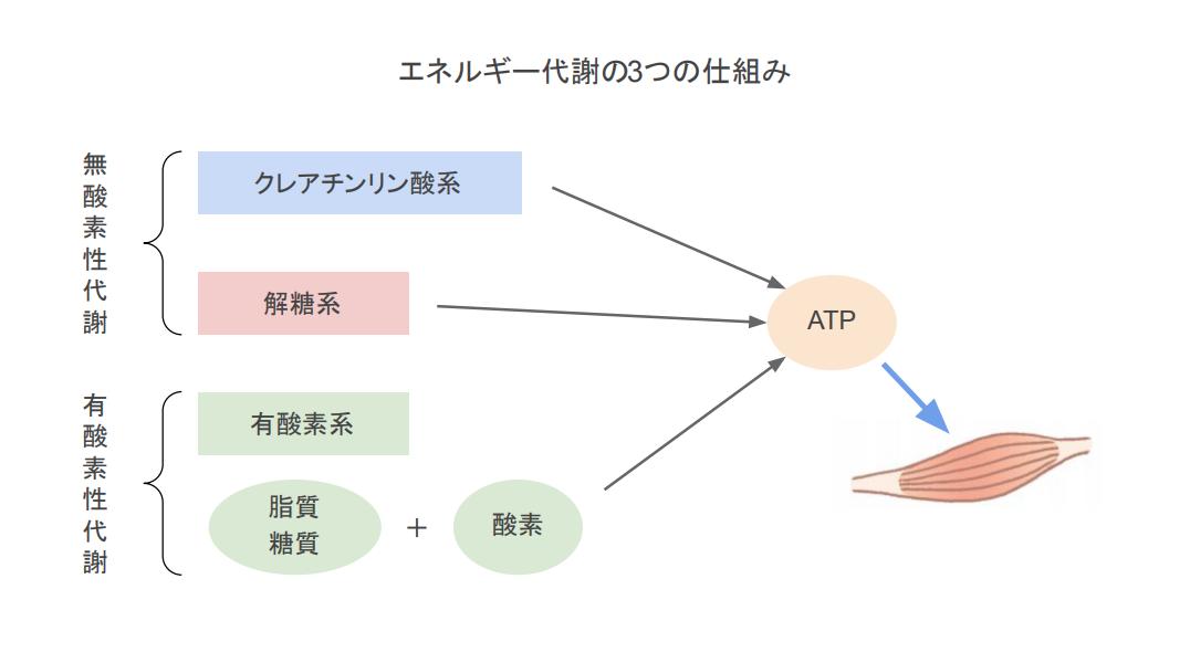 f:id:takumasa39:20210423191018p:plain