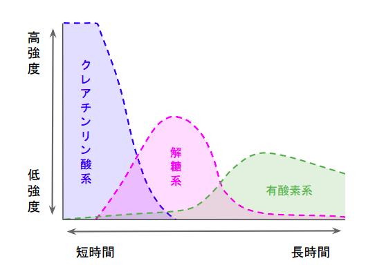 f:id:takumasa39:20210423191040p:plain
