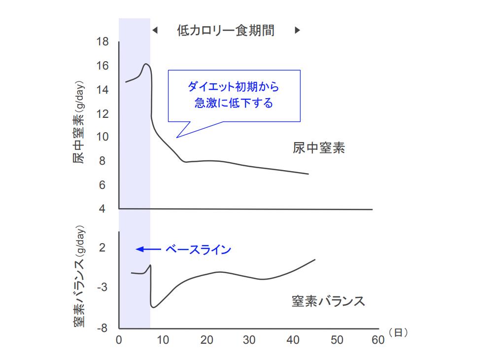 f:id:takumasa39:20210511095623p:plain