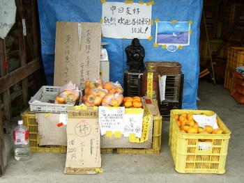 秋 柿畑の直売所にて