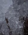 佐渡 葡萄のような氷