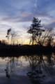 佐渡 冬のため池にて/夕暮れ時