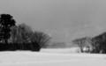 佐渡 白く煙る冬風景