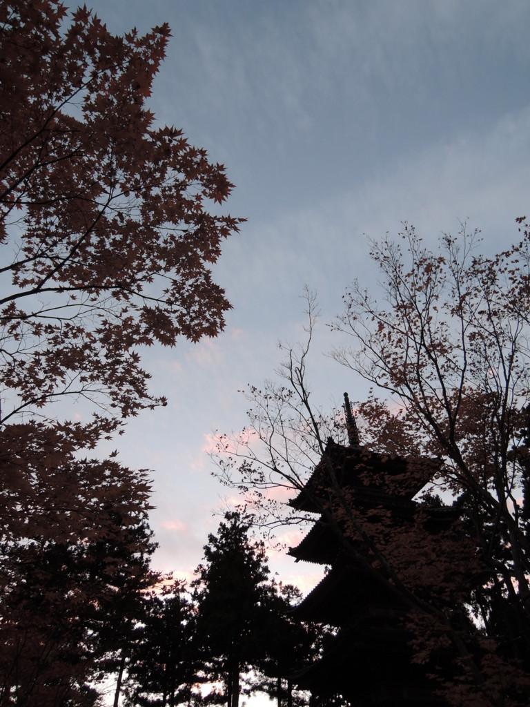 f:id:takumi-2jam:20161111193544j:plain
