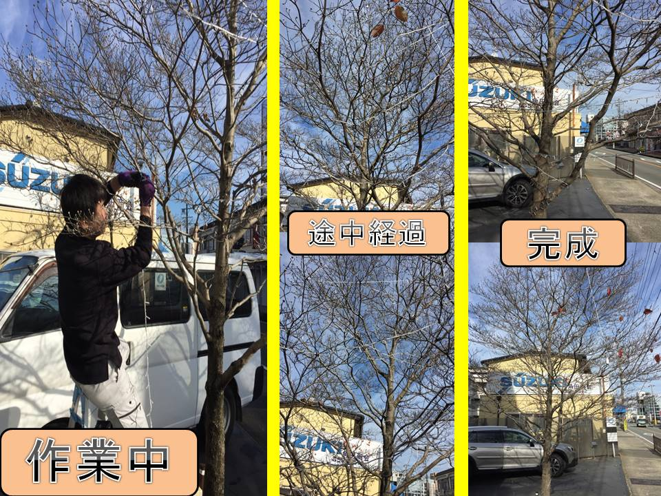 f:id:takuo0701game:20161207144455j:plain