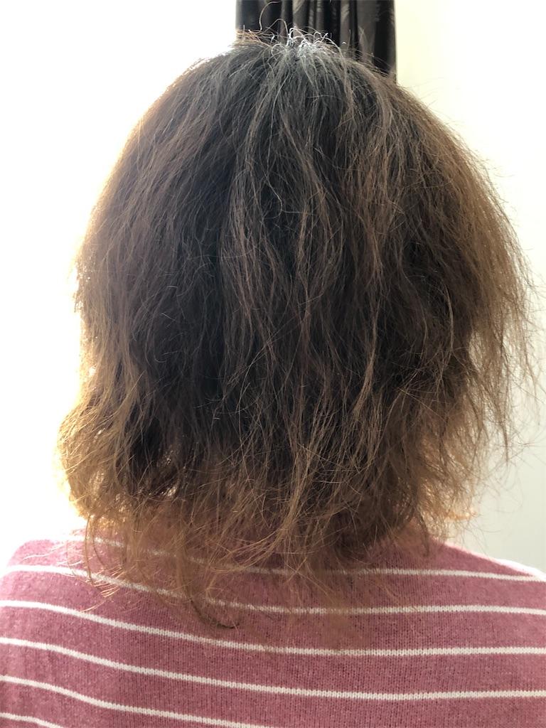 f:id:takuro-honda10:20190304071355j:image