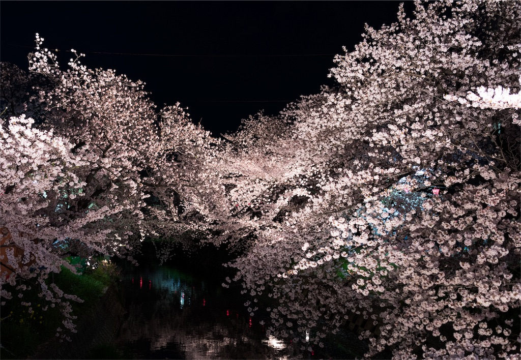 f:id:takutaku223:20170410013147j:image