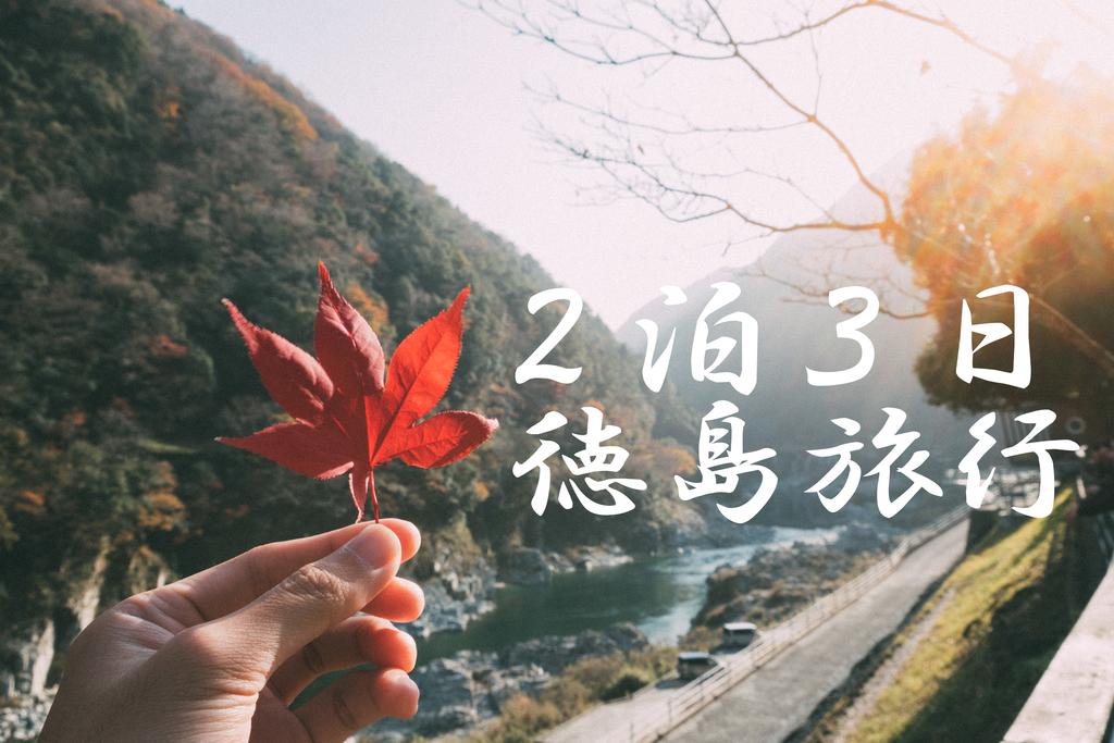 f:id:takutarou08:20181225064124j:plain
