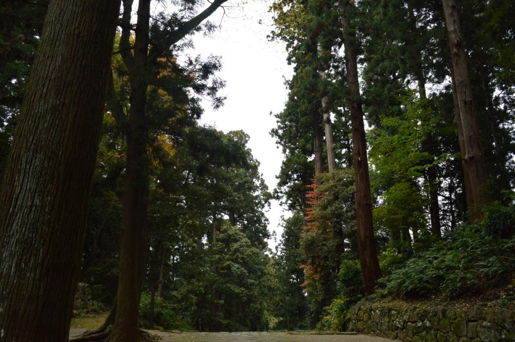 f:id:takuya-suzuki-hitime:20160823013156j:plain