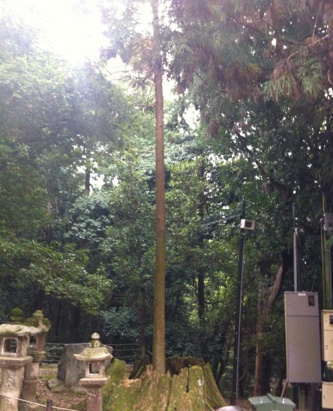 f:id:takuya0206:20121014133823j:plain
