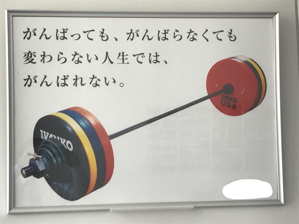 f:id:takuya3162:20170803131441j:image