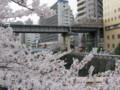 [鉄道]東急池上線1000系と目黒川の桜