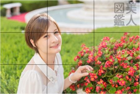 f:id:takuyaa66:20170205105243p:plain