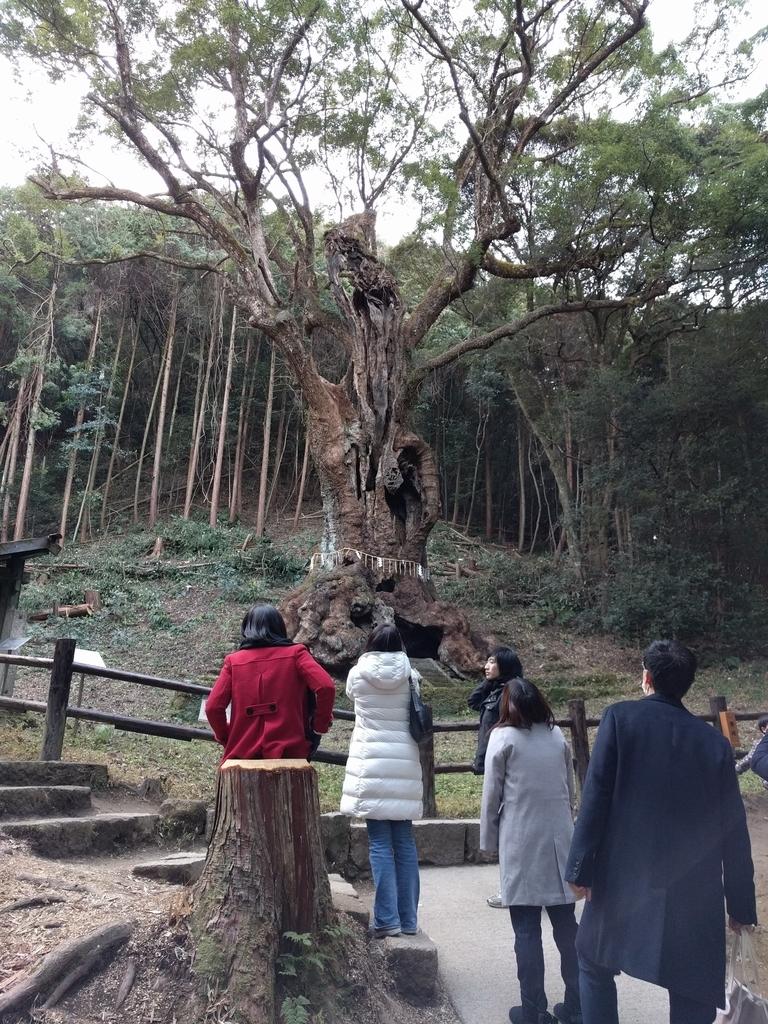 f:id:takuyaiwamoto:20181205014226j:plain:w320