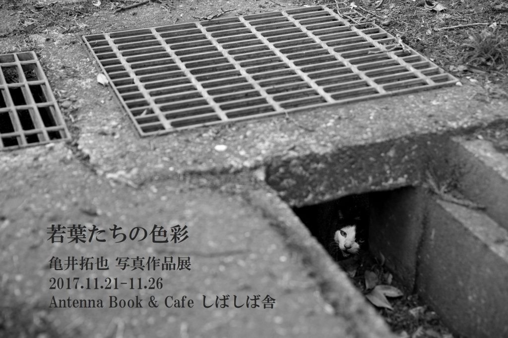 f:id:takuyakamei:20171121002326j:plain