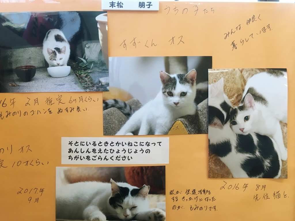 f:id:takuyakamei:20180127154944j:plain