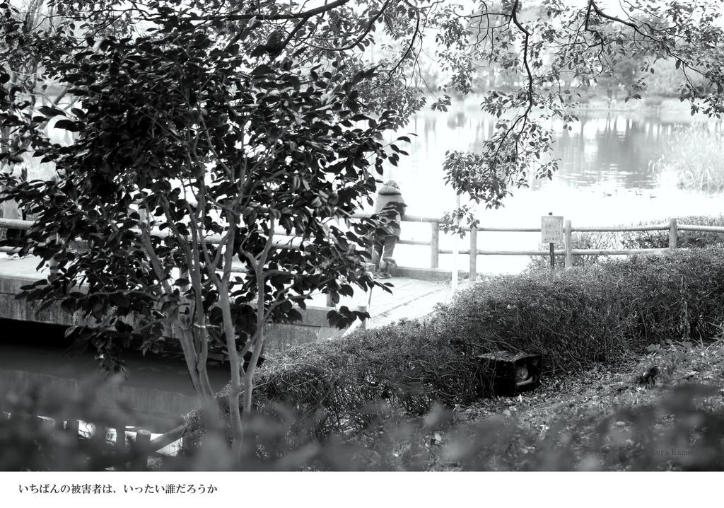 f:id:takuyakamei:20180901151032j:plain