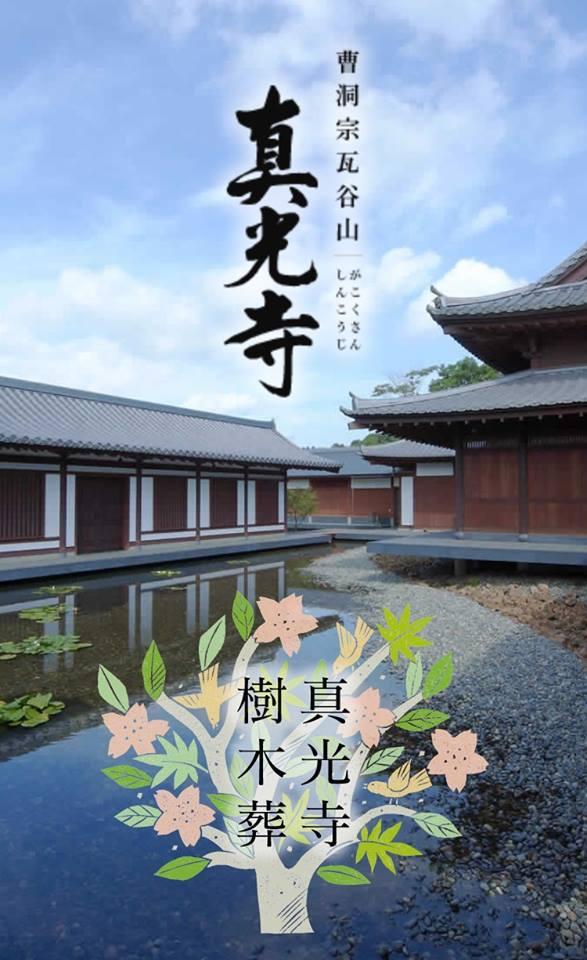 f:id:takuyakamei:20190427132626j:plain
