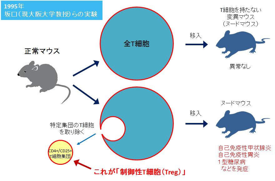f:id:takyamamoto:20170412161554p:plain