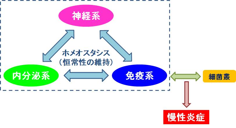 f:id:takyamamoto:20170605214420p:plain